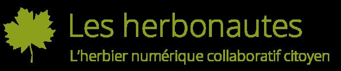 logo herbonautes