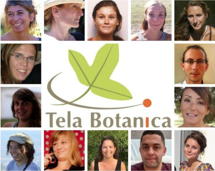 Photographie de l'equipe tela botanica