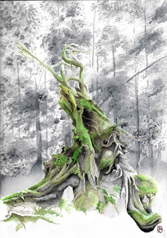 14 - Forêt initiale par Isabelle Pierdomenico