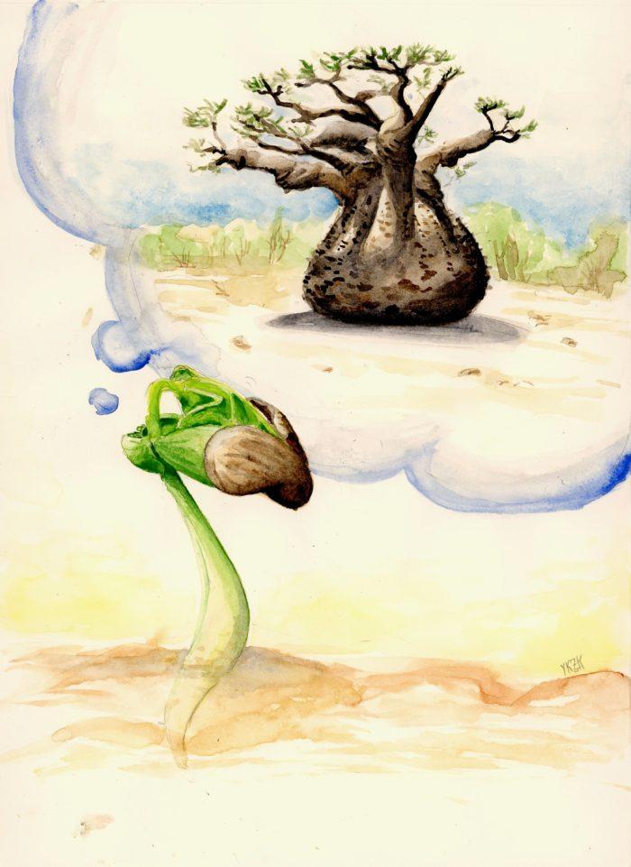 32 - Chaque arbre a été avant tout une graine qui s'est permise de rêver par Yuko KRZYZANIAK