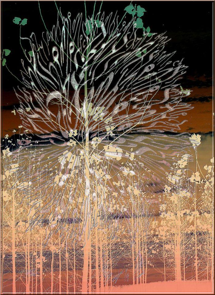 9 - Chrysantheme peuplier par Jakapiax