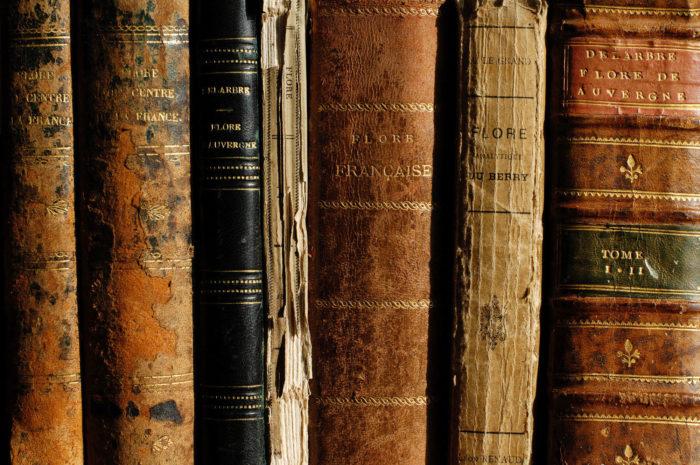 Archives bibliographiques - Centre de documentation du Conservatoire botanique