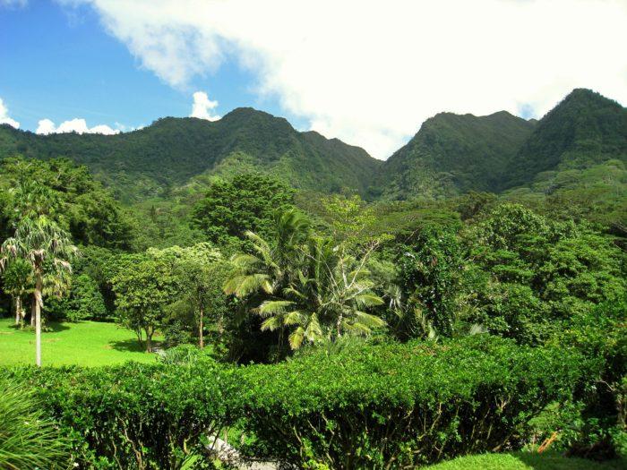 hawaii-69573_1920
