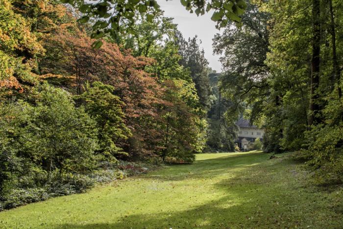 Arboretum de La Fosse ©V. Lamorlette, SPI Centre Val de Loire