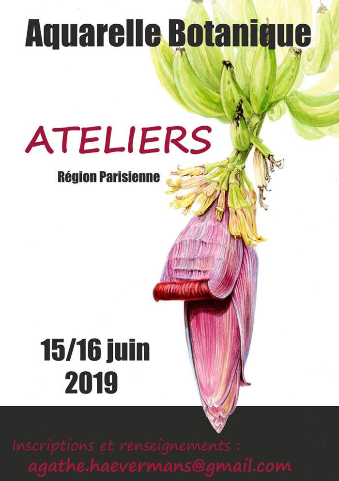 Atelier Agathe Haevermans juin 2019