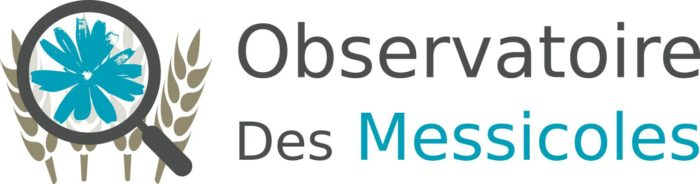 LOGO_MESSICOLES_site