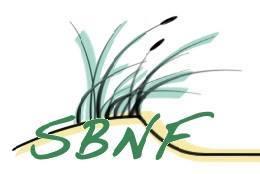 Logo SBNF_Facebook