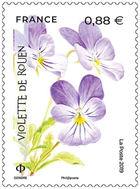Timbre Violette de Rouen
