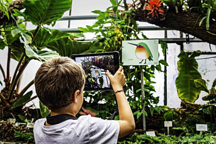 Application réalité augmentée avec enfant © Pierre-Francois Valck - JBN (1)w