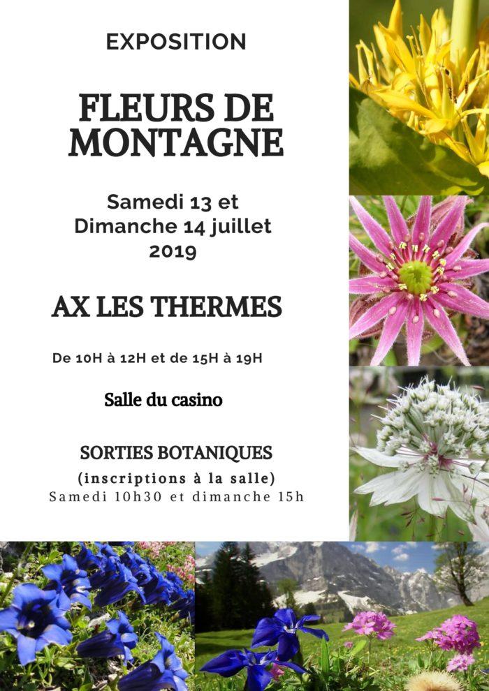 FLEURS DE MONTAGNE.jpg-page-001
