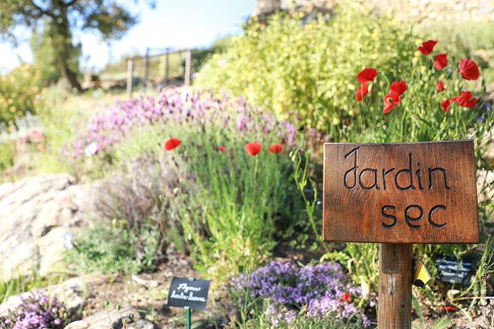 jardin sec jardin de l'Abbaye de Valsaintes