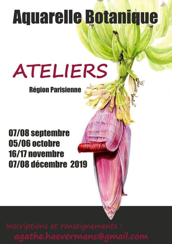 Atelier Agathe Haevermans sept 2019 3-1