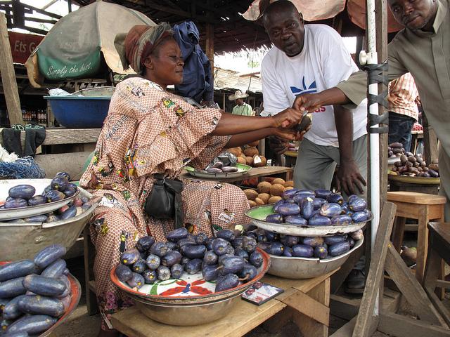 Image 1 : Safous en vente dans un village camerounais. Entre juin et septembre, les fruits sont revendus en tas ou en plateaux dans les marchés. Le prix est fonction de la qualité des fruits, que les consommateurs testent en goûtant.