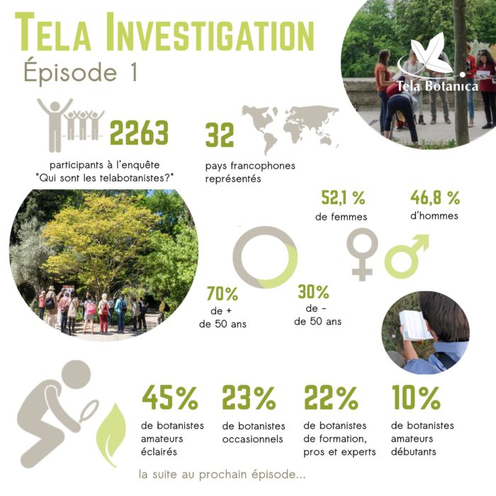 Tela-Investigation-Infographies-v1-page001
