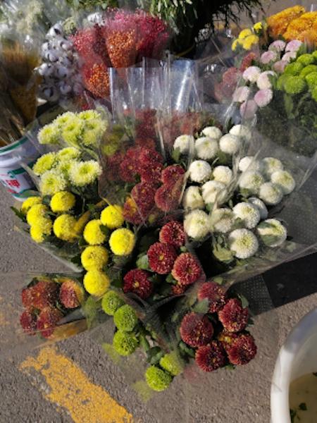 Chrysanthèmes sur un marché aux fleurs à Pékin