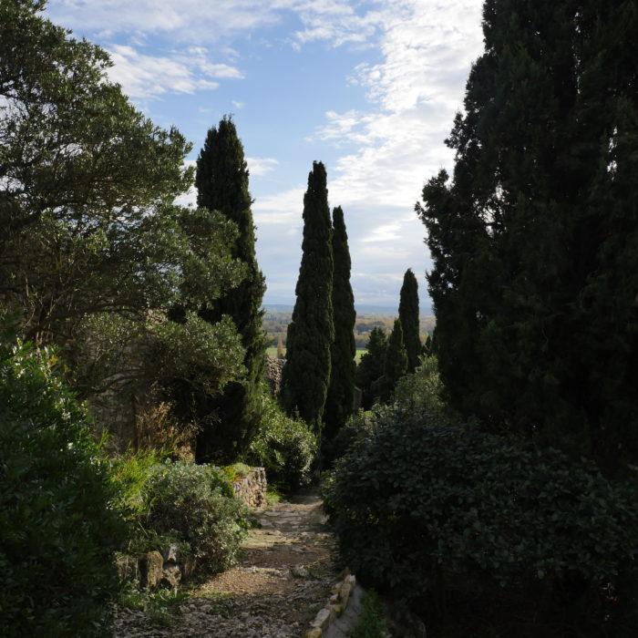 Futur sentier botanique en terrasses