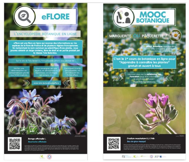 botanique et numerique