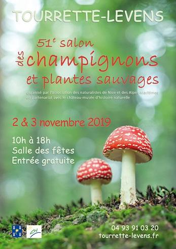 salon_champignons_-_copie