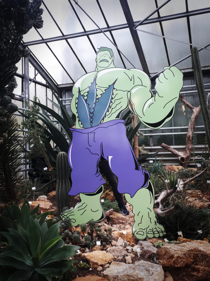 Hulk et les agaves © Pierre-Francosi VALCK - JBN