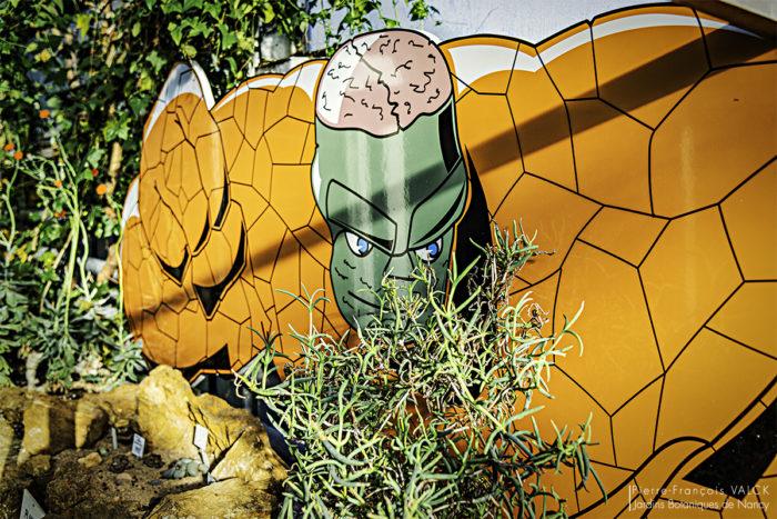 Super-Héros Super-Plantes 16 - Serres tropicales © Pierre-Francois VALCK - JBNw