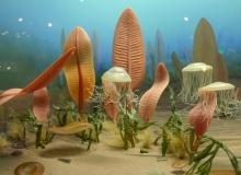 """Le monde étrange de la période de l'Édiacarien (630-542 millions d'années), une période au cours de laquelle les algues vertes ont pu se diversifier après les sévères glaciations du Cryogénien (Wikimedia Commons contributors, """"File:Life in the Ediacaran sea.jpg"""" (accessed January 3, 2020) (CC BY-SA 2.0)."""