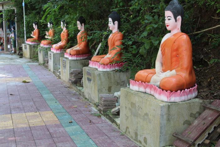bouddhas lotus