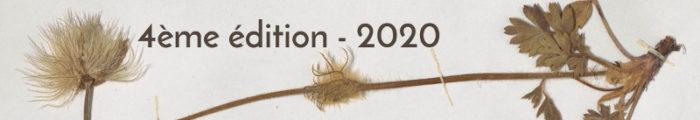 Spécimen de Pulsatilla vernalis de l'herbier du Conservatoire Botanique national Alpin