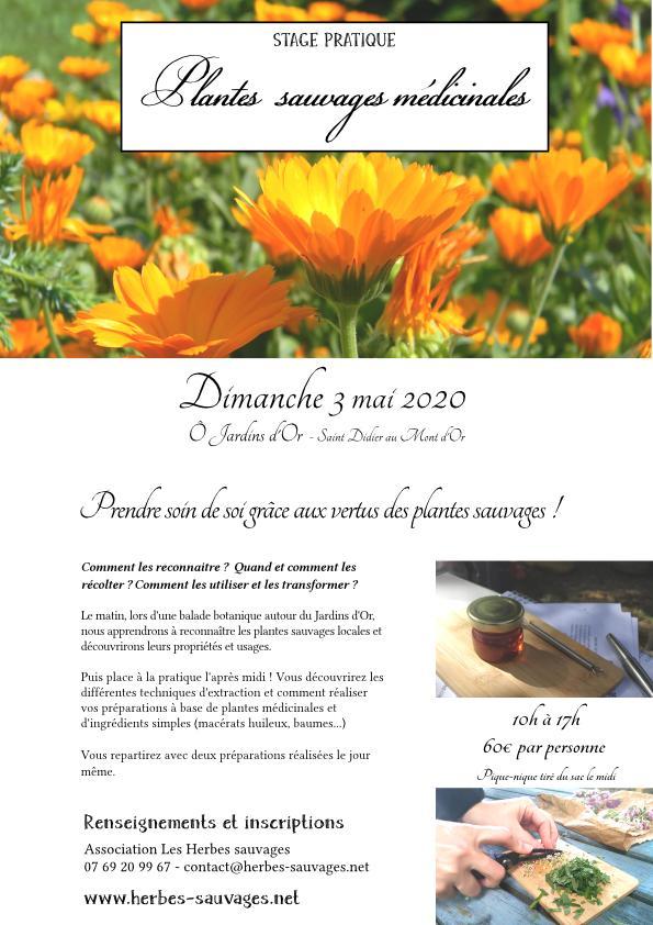 2020_05_03_PlantesMedicinales_OJardinsdOr-page001