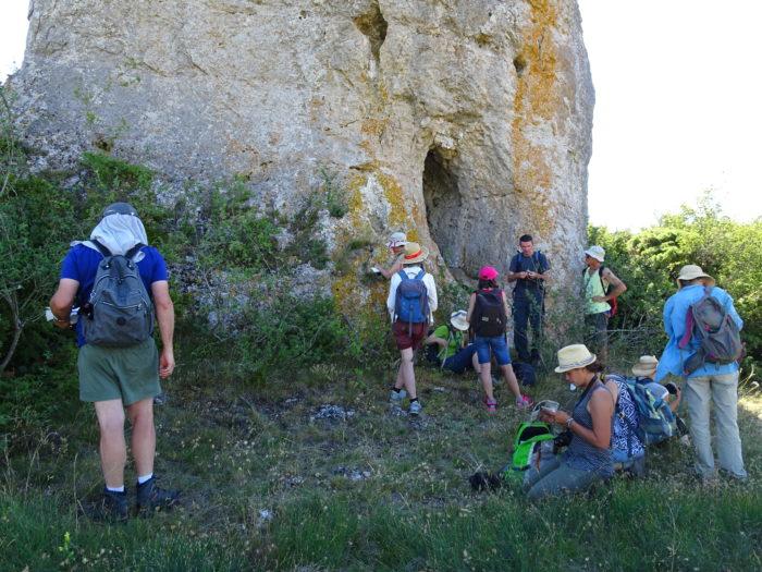 Observation en groupe (T. Delhotal) (2)