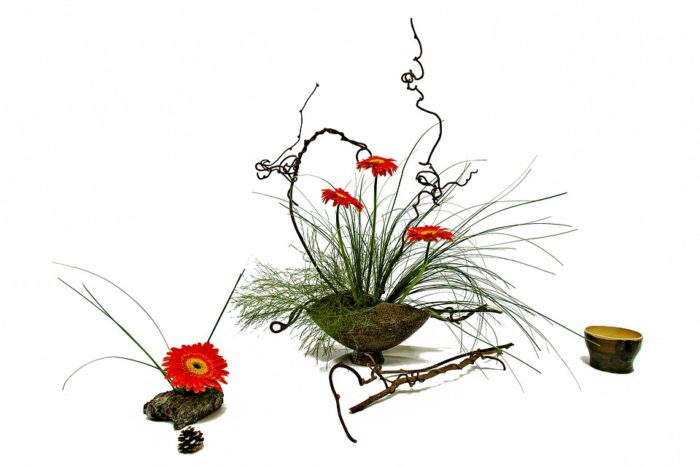 flower-4644654_960_720