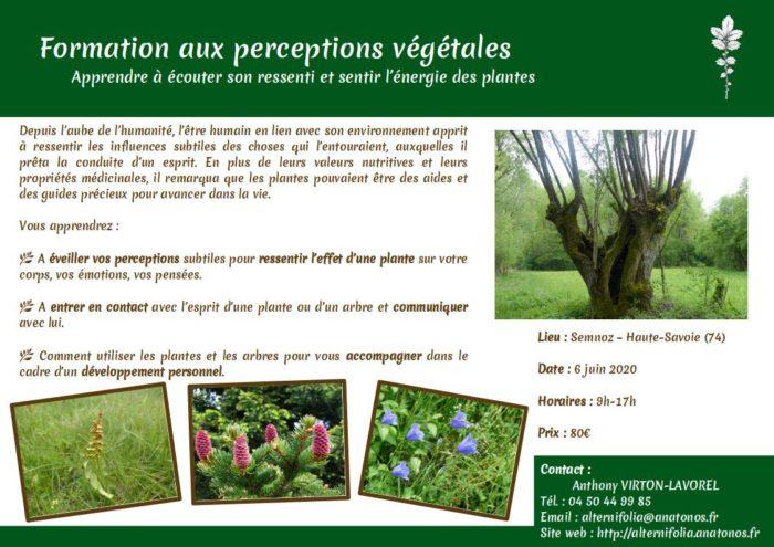 2020-06-06_perceptions-vegetales