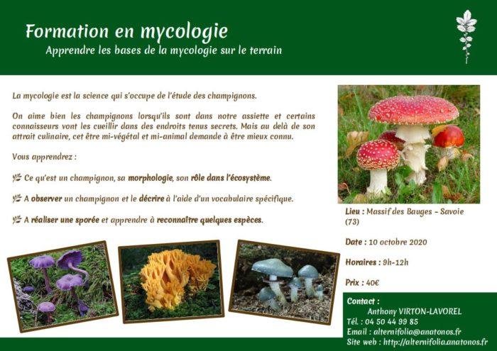 2020-10-10_mycologie