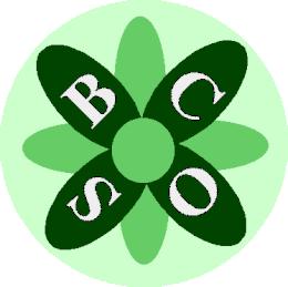 logotype sbco