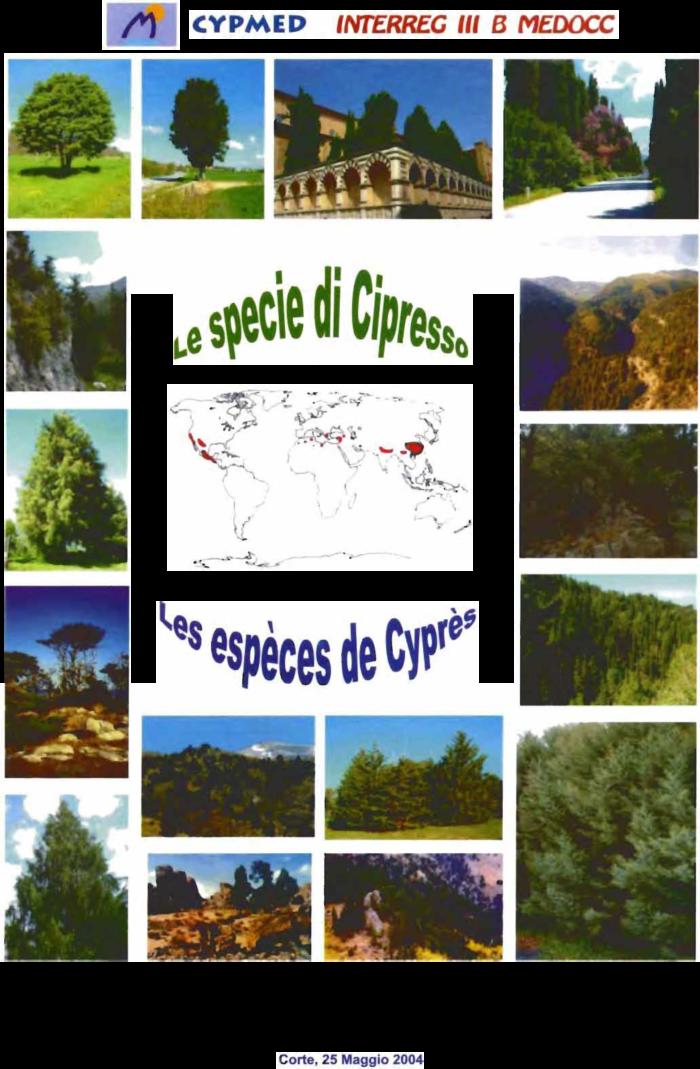 Book cover Le specie di Cipresso