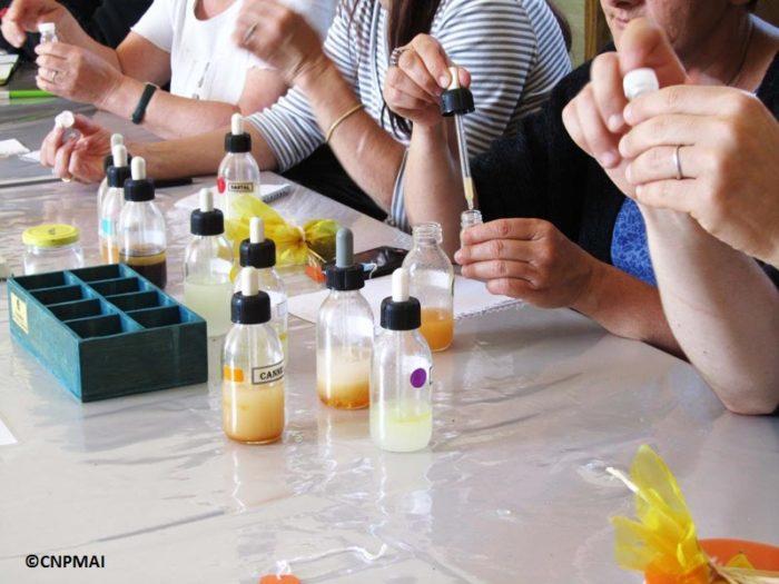 article ateliers et stages adultes atelier-plantes-a-parfum