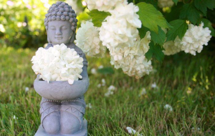 buddha-753016_1920-1536x971