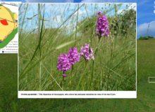 Capture d'écran d'une des visites virtuelles du CEN Bourgogne