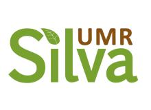 logo UMR Silva