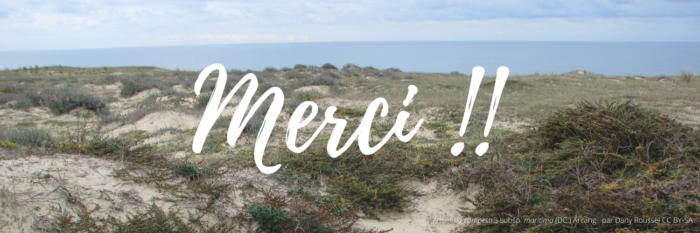 LANDES-MERCI
