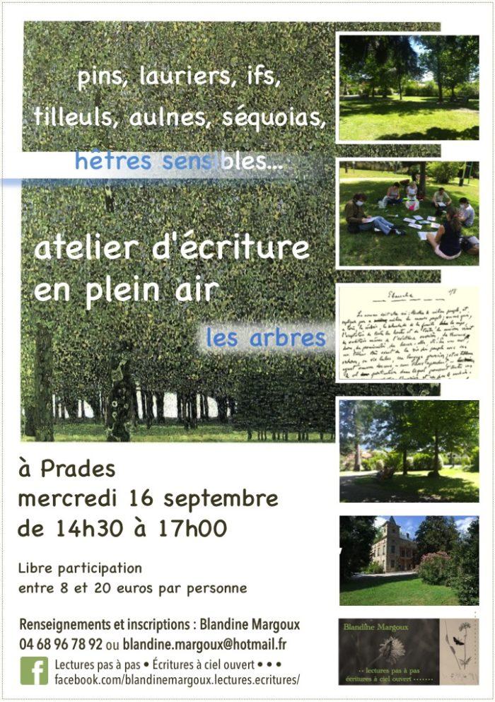 Lectures pas à pas - Arbres au parc Pams - 16 septembre 2020 - Diaporama