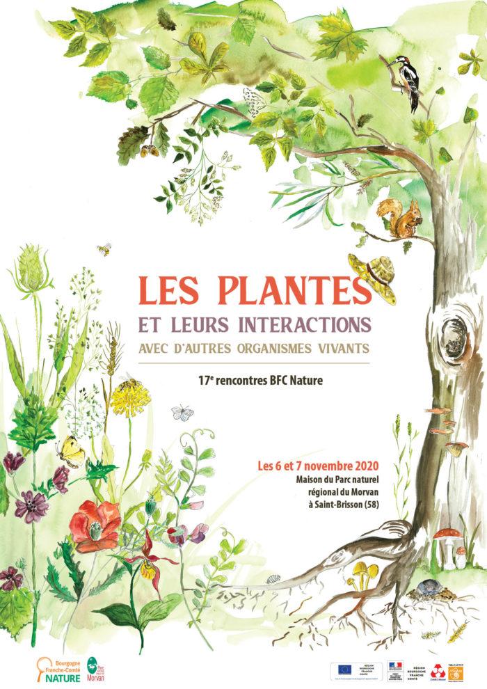 Les plantes et leurs interactions avec d'autres organismes vivants