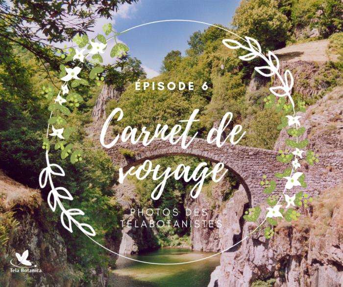 Carnet de voyage 6 - L'Ardèche