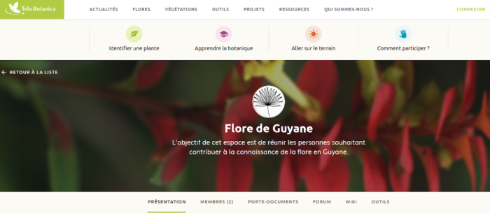 EP Flore de Guyane(2)