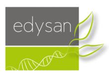 logo Edysan