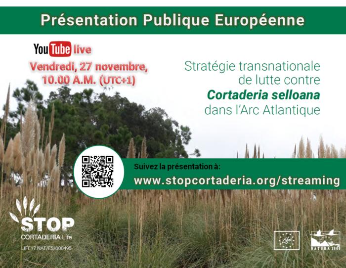 Affiche présentation Stratégie Transnationale