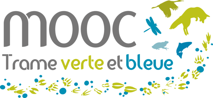 VF2020-MOOC-TVB-Logo-couleur-fond-transparent