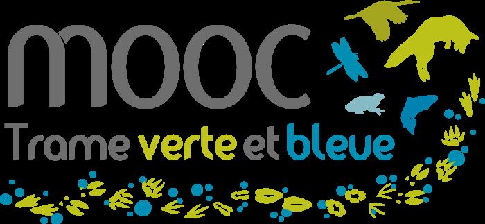 VF2020-MOOC-TVB-Logo-couleur-fond-transparent