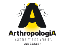 logo Arthropologia