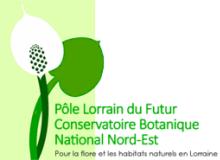 logo Pole Lorrain du futur CBN NE