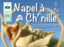 Couverture Napel à Ch'nille n°7